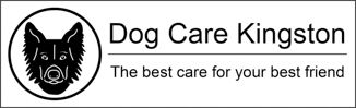 DogCareKingston